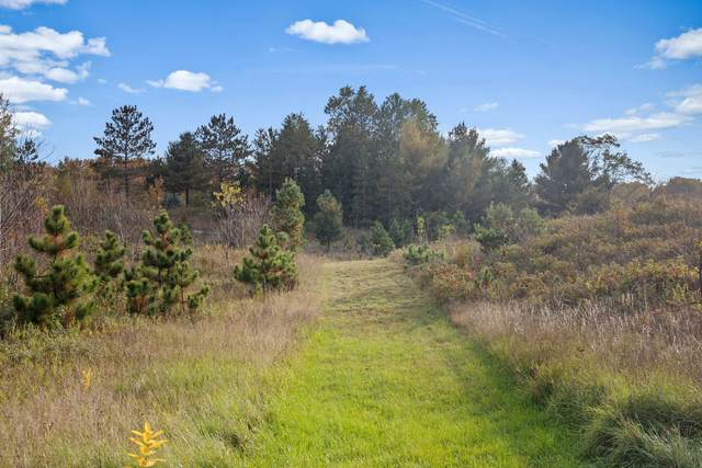 V/L 16 Mile Rd, Leroy, MI 49655 (MLS #21110285) :: BlueWest Properties