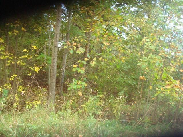 4599 Wynnewood Drive, Camden, MI 49232 (MLS #21110638) :: The Hatfield Group