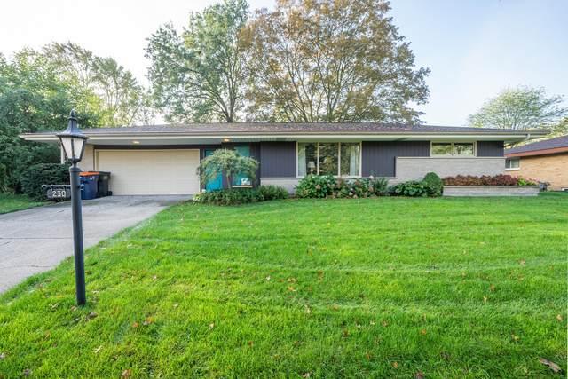 230 W 25th Street, Holland, MI 49423 (MLS #21110684) :: Sold by Stevo Team | @Home Realty