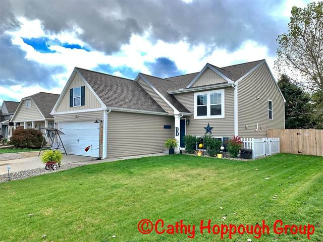 121 Foxtail Drive, Ionia, MI 48846 (MLS #21110814) :: Sold by Stevo Team   @Home Realty