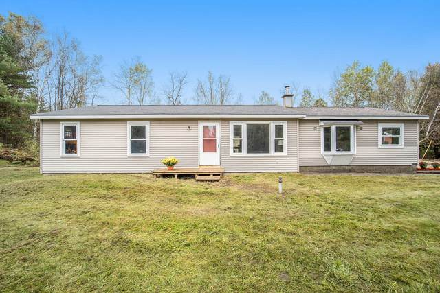 11884 9 Mile Rd Road, Kaleva, MI 49645 (MLS #21110843) :: Sold by Stevo Team   @Home Realty