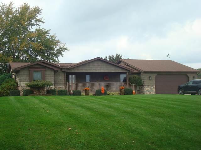14600 W Diane Drive, Camden, MI 49232 (MLS #21111103) :: Sold by Stevo Team | @Home Realty