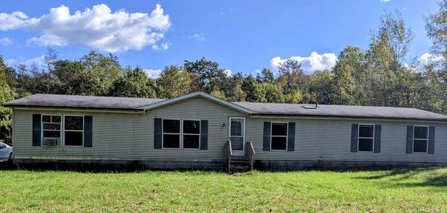 4390 W 104th Street, Grant, MI 49327 (MLS #21111212) :: Sold by Stevo Team | @Home Realty