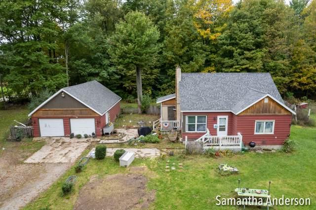 1585 S Maple Island Road, Hesperia, MI 49421 (MLS #21111312) :: Sold by Stevo Team | @Home Realty