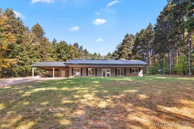 11801 19 Mile Road NE, Cedar Springs, MI 49319 (MLS #21111315) :: Sold by Stevo Team | @Home Realty