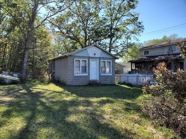 1291 Washington Street, Baldwin, MI 49304 (MLS #21111349) :: Sold by Stevo Team | @Home Realty