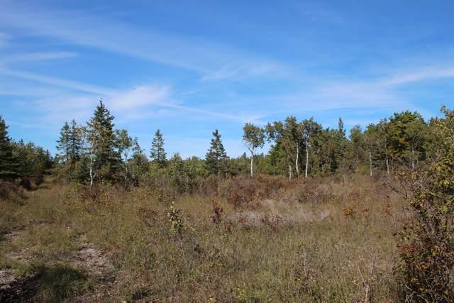 E Hamilton Road, Alpena, MI 49707 (MLS #21111357) :: Deb Stevenson Group - Greenridge Realty