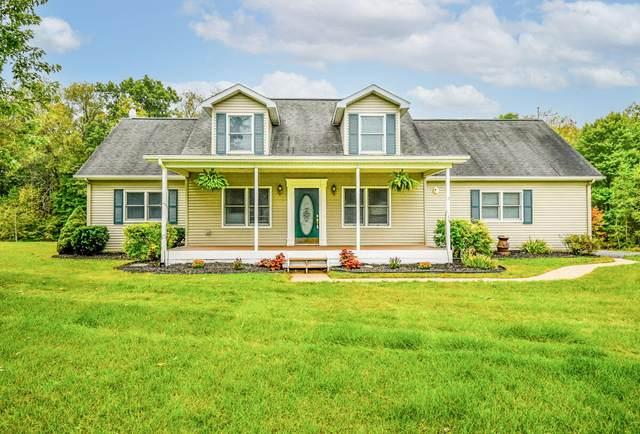 10421 Pauline Drive, Jackson, MI 49201 (MLS #21111584) :: Sold by Stevo Team | @Home Realty