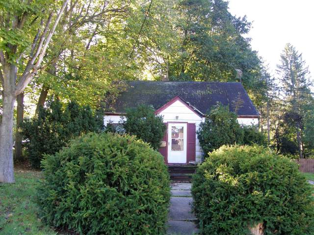 128 Michigan Street, Niles, MI 49120 (MLS #21111585) :: Sold by Stevo Team   @Home Realty