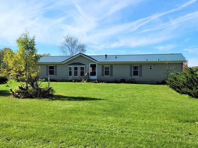 325 N East County Line Road, Crystal, MI 48818 (MLS #21111852) :: Sold by Stevo Team | @Home Realty