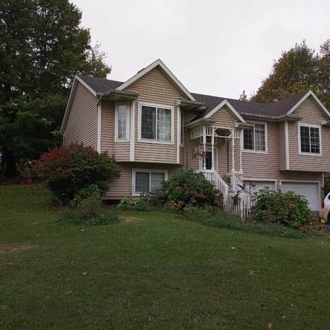1636 120th Avenue, Allegan, MI 49010 (MLS #21111940) :: Sold by Stevo Team   @Home Realty