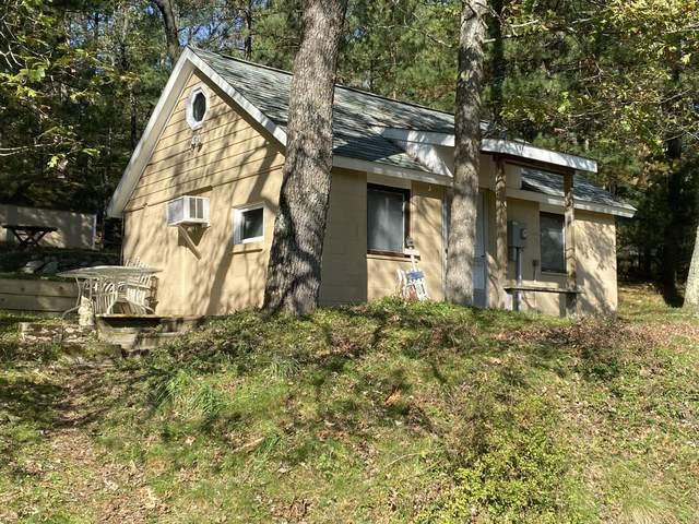 9177 S Lost Pine, Baldwin, MI 49304 (MLS #21112088) :: Sold by Stevo Team | @Home Realty
