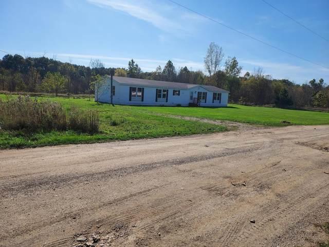 7283 Mar Lane Lane, Clarksville, MI 48815 (MLS #21112136) :: Sold by Stevo Team   @Home Realty