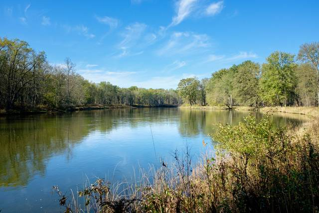 Parcel D River Road, Manistee, MI 49660 (MLS #21112165) :: Sold by Stevo Team | @Home Realty