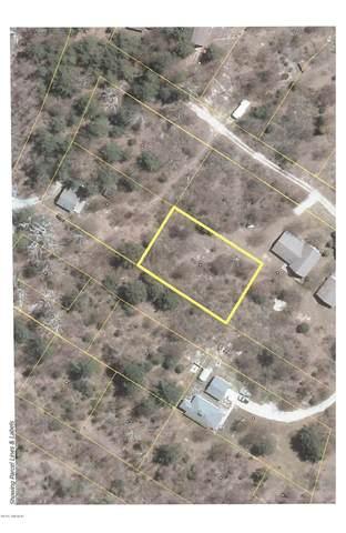 Ferndale Drive Lots 4, 5, 6, Onekama, MI 49675 (MLS #21112435) :: The Hatfield Group
