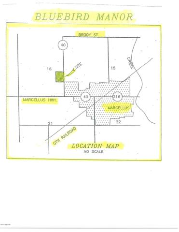 11 Ryan Road, Marcellus, MI 49067 (MLS #15049989) :: Jennifer Lane-Alwan