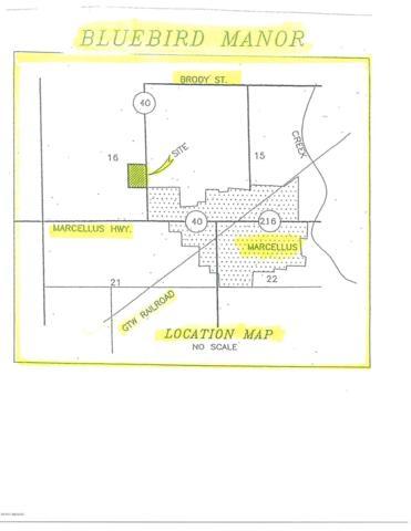 12 Ryan Road, Marcellus, MI 49067 (MLS #15049997) :: Ginger Baxter Group