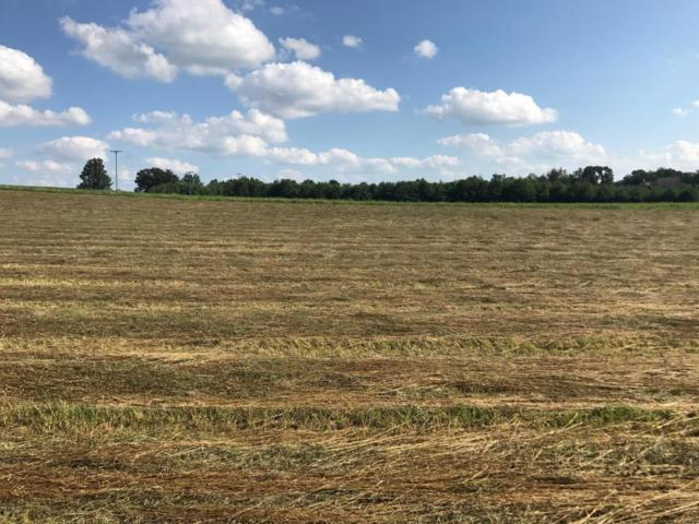 Parcel 3 B Drive S, Marshall, MI 49068 (MLS #16057964) :: 42 North Realty Group