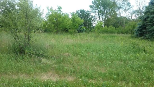 Olmstead #26, Muir, MI 48860 (MLS #17010596) :: Carlson Realtors & Development