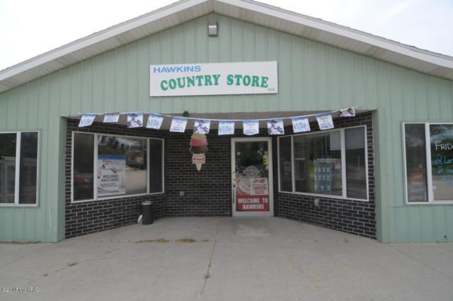 13629 N Cottonwood Avenue, Reed City, MI 49677 (MLS #17025584) :: Deb Stevenson Group - Greenridge Realty