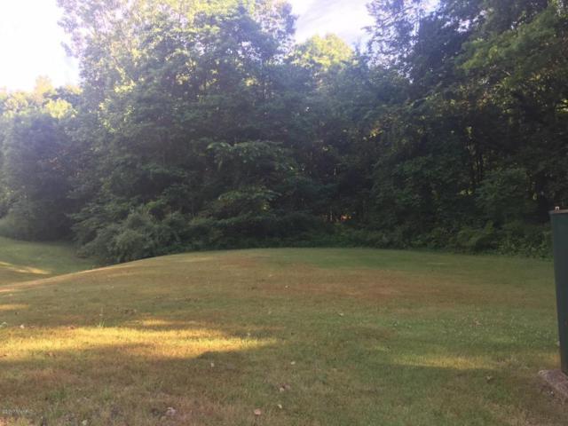 205 Golfview Drive, Plainwell, MI 49080 (MLS #17028982) :: Matt Mulder Home Selling Team