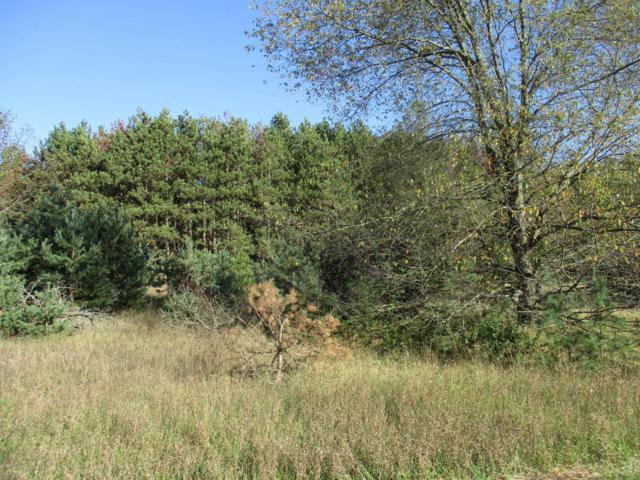262 S Quarterline Road Parcel 2, Scottville, MI 49454 (MLS #17050051) :: Deb Stevenson Group - Greenridge Realty