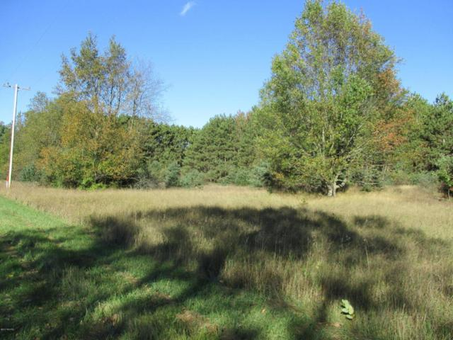 262 S Quarterline Road Parcel 3, Scottville, MI 49454 (MLS #17050058) :: Deb Stevenson Group - Greenridge Realty