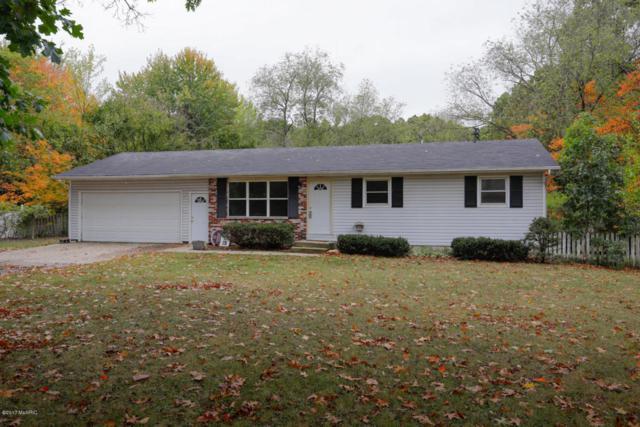 66060 29th Street, Lawton, MI 49065 (MLS #17050847) :: Matt Mulder Home Selling Team