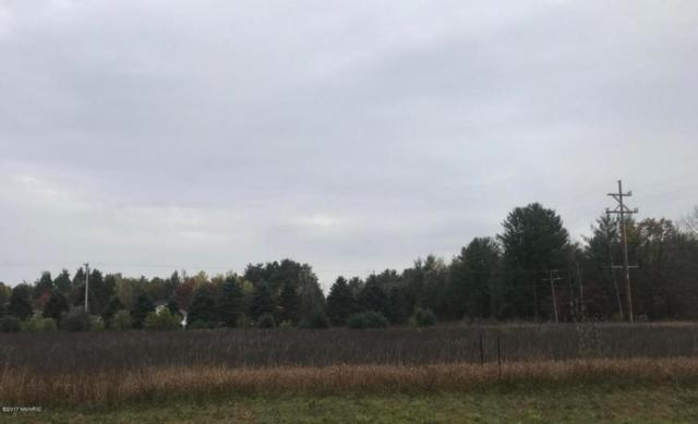 Par 4 Shaw, Howard City, MI 49329 (MLS #17050950) :: Carlson Realtors & Development