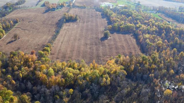 W Buffalo Rd, Galien, MI 49113 (MLS #17055582) :: Carlson Realtors & Development