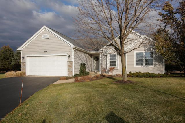 8857 Tamarisk Circle, Richland, MI 49083 (MLS #17057169) :: Matt Mulder Home Selling Team