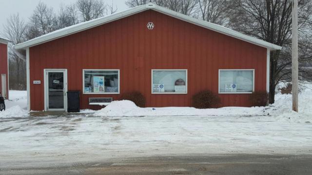 1268 E Newell Street, White Cloud, MI 49349 (MLS #18002354) :: Deb Stevenson Group - Greenridge Realty