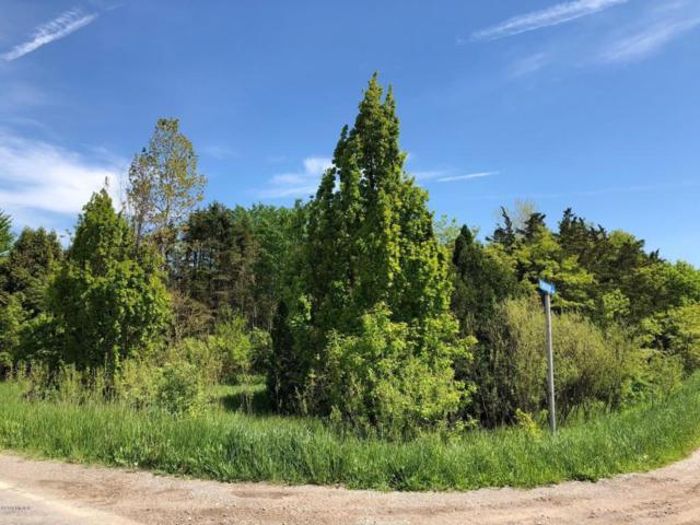 1900 Plantation Row, Baroda, MI 49101 (MLS #18003847) :: JH Realty Partners