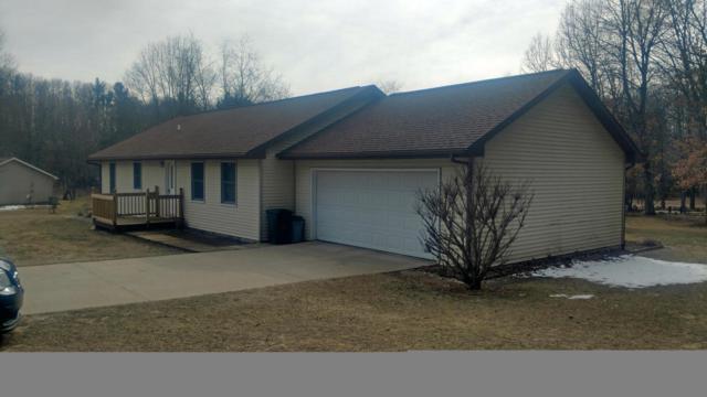 14099 Wildwood Drive, Big Rapids, MI 49307 (MLS #18008589) :: JH Realty Partners