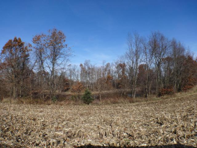 Address Not Published, Marshall, MI 49068 (MLS #18009467) :: 42 North Realty Group
