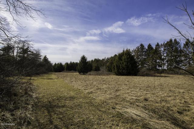 V/L 120th Ave., Fennville, MI 49408 (MLS #18010997) :: Deb Stevenson Group - Greenridge Realty