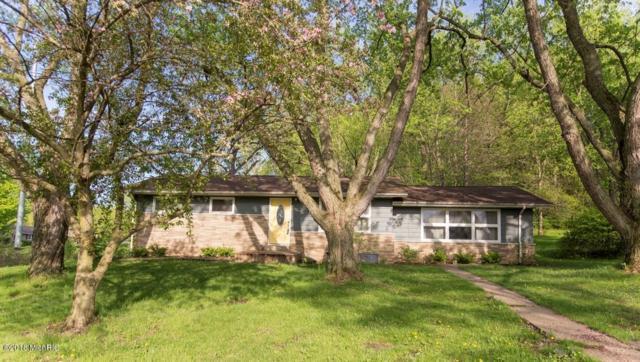 401 Holmes Drive, Buchanan, MI 49107 (MLS #18011542) :: Carlson Realtors & Development