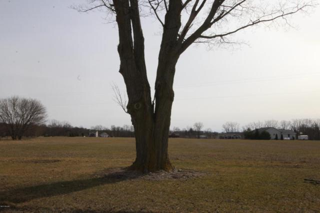 Lot 20 N Messer Road, Freeport, MI 49325 (MLS #18011843) :: Carlson Realtors & Development