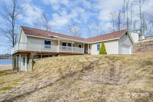 6763 N. Hamlin Shoals Lane, Ludington, MI 49431 (MLS #18012706) :: Matt Mulder Home Selling Team
