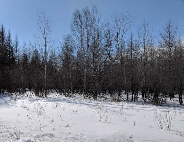 S Forrest Side Road, Brimley, MI 49715 (MLS #18013081) :: Jennifer Lane-Alwan