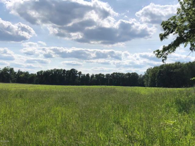 lot 1 Wellman Road, Woodland, MI 48897 (MLS #18014722) :: Carlson Realtors & Development