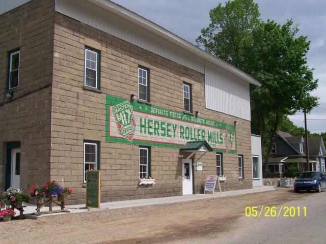110 N Main Street, Hersey, MI 49639 (MLS #18017321) :: JH Realty Partners