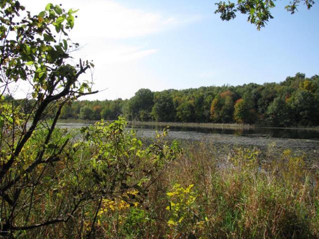 VL East Michigan Avenue, Galesburg, MI 49053 (MLS #18017780) :: Carlson Realtors & Development