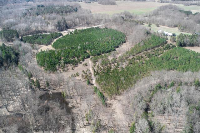 000 E Wilson Road, Custer, MI 49405 (MLS #18018146) :: Carlson Realtors & Development