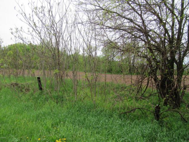 V/L Nye Road, Galien, MI 49113 (MLS #18019158) :: Deb Stevenson Group - Greenridge Realty