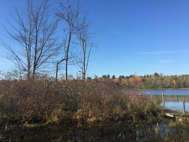 Hunters Trail, Six Lakes, MI 48886 (MLS #18019652) :: Deb Stevenson Group - Greenridge Realty