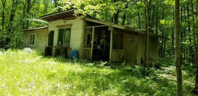 9 Mile Road, Evart, MI 49631 (MLS #18021308) :: 42 North Realty Group