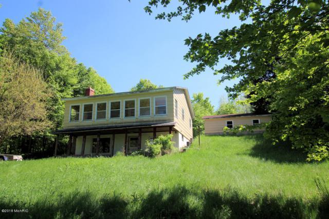 8814 E Buchanan Road, Hesperia, MI 49421 (MLS #18022565) :: Carlson Realtors & Development