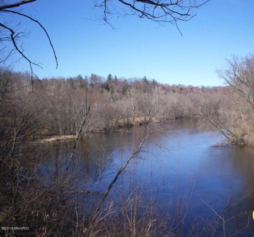 PAR A River Run, Fremont, MI 49412 (MLS #18022706) :: 42 North Realty Group