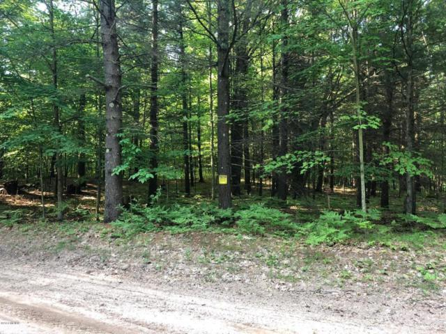 5 Indian Trail Road, Custer, MI 49405 (MLS #18023496) :: Carlson Realtors & Development
